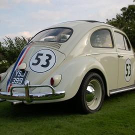 Herbie Rear